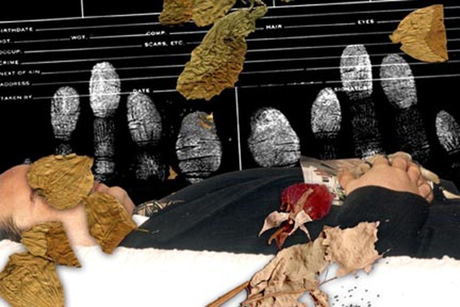 Imprints 2