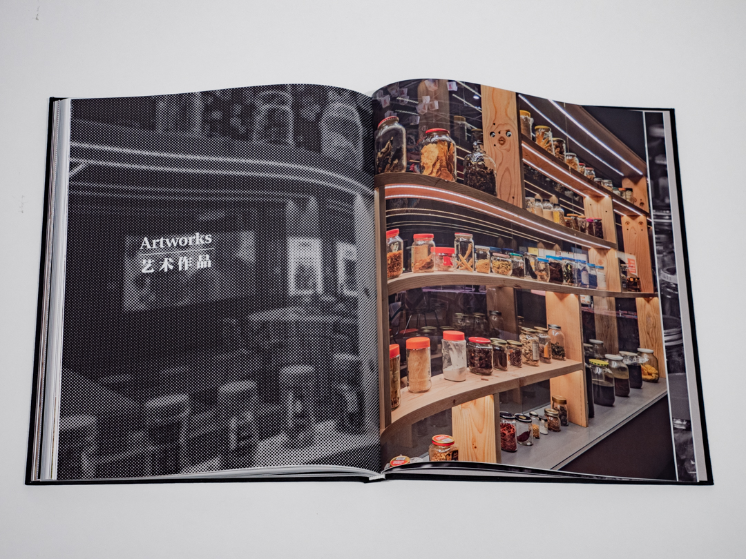Occupying Chinatown Book-27